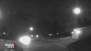 Edmonton police release video of pedestrians being run over by white van to get tips