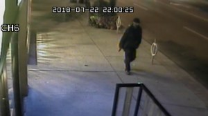 Security footage shows Toronto Danforth shooter in moments before mass shooting