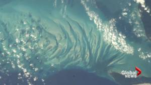 Chris Hadfield donated space photos to Dalhousie University