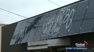 Owner of Edmonton's Earth's General Store fed up with vandals