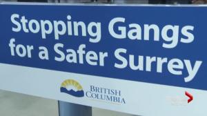 Surrey gang prevention program