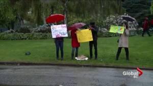 Public outcry as Vancouver Park Board bans cetaceans from aquarium