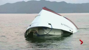Tragic whale watching accident kills 5