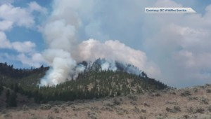 B.C. Wildfire Service to fight wildfire near Osoyoos with fire
