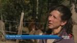 Mother Nature helps cancer survivors