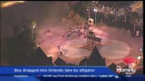 Boy dragged into Orlando lake by alligator