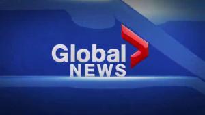 Global News Hour at 6 Edmonton: Nov. 29