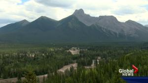 Back on Course: Return of golf course economic boost for Kananaskis businesses