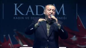 Erdogan compares German conduct with Nazi period