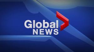 Global News at 5 Edmonton: Aug. 20
