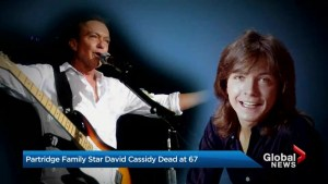 Remembering David Cassidy