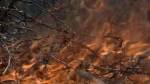 Crews making progress against Okanagan wildfires