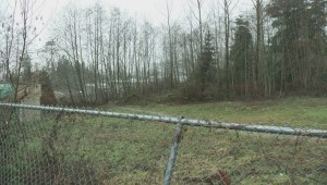 Land beside two schools in Anmore is contaminated
