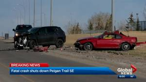Calgary police investigating fatal crash in city's southeast