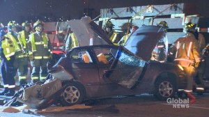 Man killed after collision with transport truck on Hwy. 401