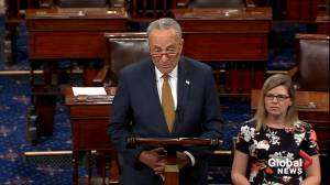 Schumer calls on McConnell to schedule vote on bill to close loopholes in gun background checks