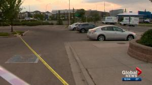 Calgary sinkhole leaves cars stranded