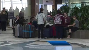 'We're all in a pickle': Travellers wait out nor'easter at Halifax airport
