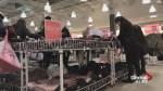 Homeless women get free Ardene shopping spree