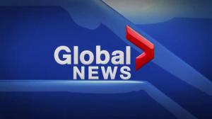 Global News at 5 Edmonton: Nov. 24