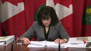 Ontario Auditor General praises Ontario Power Generation project's clear books