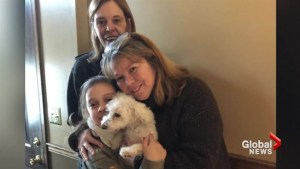 Family speaks after pet dog snatched by eagle…and lives