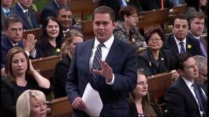 Conservatives blast Liberals for funding summer job to 'help stop Kinder Morgan pipeline'