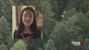Raw: IHIT release profile of person believed to have killed Marrisa Shen