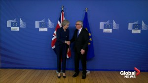 UK PM Theresa May takes Brexit renegotiation to EU