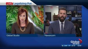 Edmonton reacts to Senate approving marijuana legalization bill (01:30)