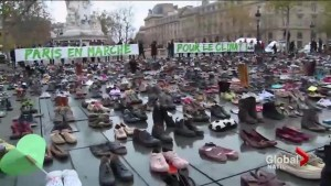Protesters in Paris ahead of Global Climate Summit