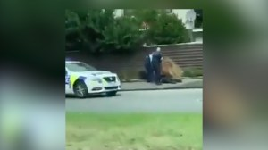 Christchurch Shooting: Onlooker captures moment of arrest of Christchurch mosque shootings suspect