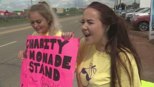 Stollery Lemonade Stand