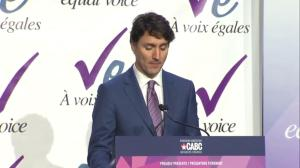 Trudeau says women selected to cabinet were worthy of positions