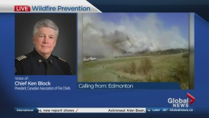 Preventing the spread of wildfires
