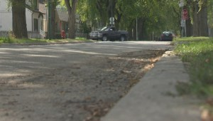 Winnipeg woman concerned about drivers ignoring stop signs