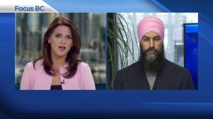 Jagmeet Singh reacts to comments made by Liberal candidate Karen Wang
