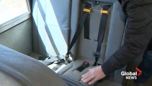 Maritime Bus president calling for seatbelts on buses