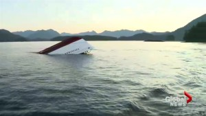 Whale watching accident turns focus on safety regulations