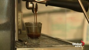 Scientists warn world's coffee species at risk of extinction