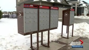 Complaints of mix-ups at Canada Post community mailboxes in Stonebridge