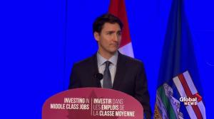 Trudeau touts tax write-offs for new business infrastructure