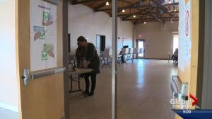 Polls open in Edmonton's Ward 12 byelection