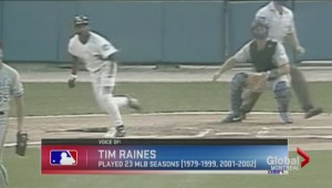 Tim Raines in baseball's Hall of Fame?