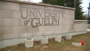 University of Guelph students call for better mental health supports