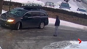 Longueuil police look for alleged thief