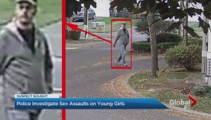 Surrey RCMP release images of sex assault suspect