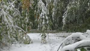 Heavy snow in Whistler