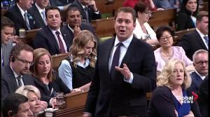 Scheer: how much of Trans Mountain purchase will be spent in Canada?