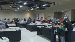Rock, Gem, Mineral and Fossil Show continues to dazzle Saskatoon